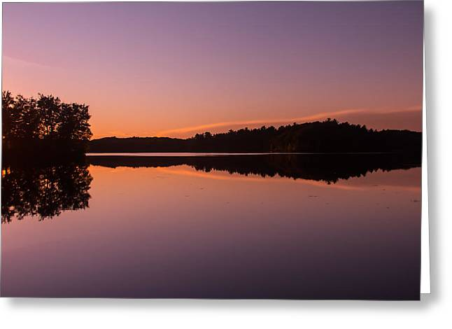 Brown Trout Photographs Greeting Cards - Bass Lake Glow Greeting Card by Torkomian Photography