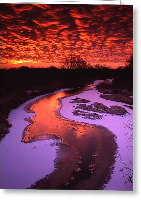 Hack-ma-tack National Wildlife Refuge Greeting Cards - Bass Scale Sunrise Greeting Card by Ray Mathis