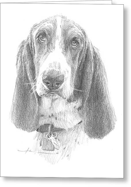Basset Drawings Greeting Cards - Basset Hound Pencil Portrait Greeting Card by Mike Theuer