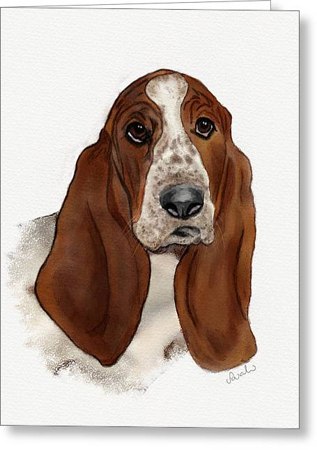 Basset Hound Greeting Cards Greeting Cards - Basset Hound Greeting Card by Sarah Dowson
