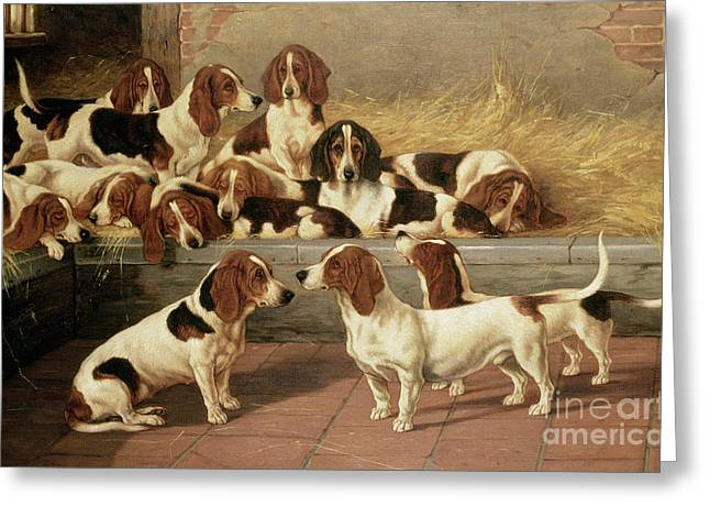 Dogs Paintings Greeting Cards - Basset Hounds in a Kennel Greeting Card by VT Garland