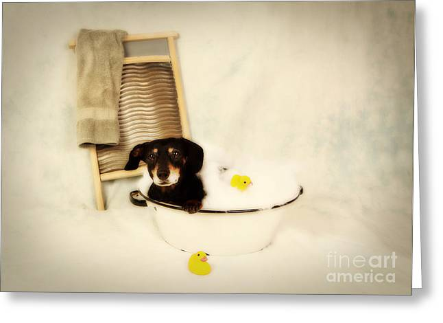 Puppy Digital Art Greeting Cards - Bath Time Greeting Card by Denise Oldridge