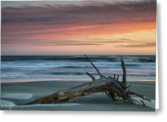 Ocean Art Photography Greeting Cards - Battered Driftwood Greeting Card by Phill  Doherty