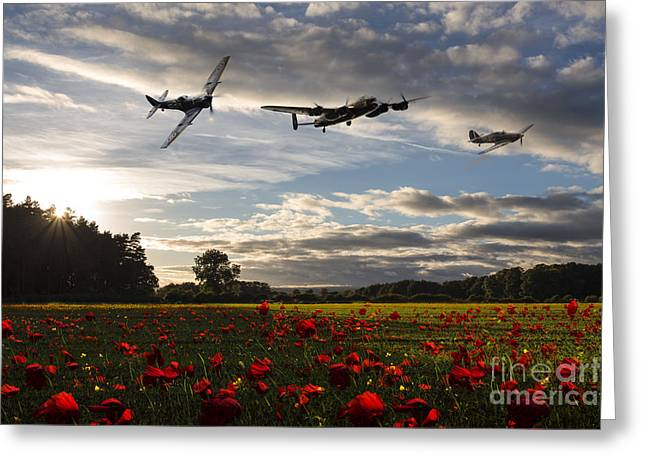 Forgotten Digital Greeting Cards - Battle of Britain Poppy Pride Greeting Card by J Biggadike
