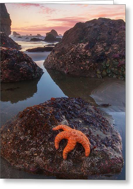 Pacific Ocean Prints Greeting Cards - Battle Rock Sunrise Greeting Card by Darren  White