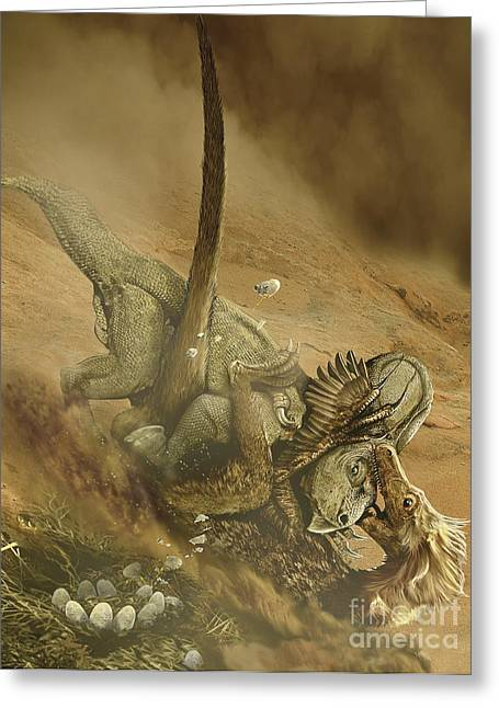 Hunting Bird Greeting Cards - Battle Scene Between A Velociraptor Greeting Card by Jan Sovak
