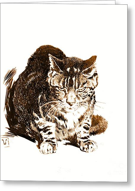 Battleship Cat 1898 Greeting Card by Padre Art