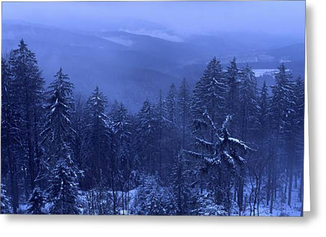 Outlook Greeting Cards - Bavarian forest in winter Greeting Card by Intensivelight