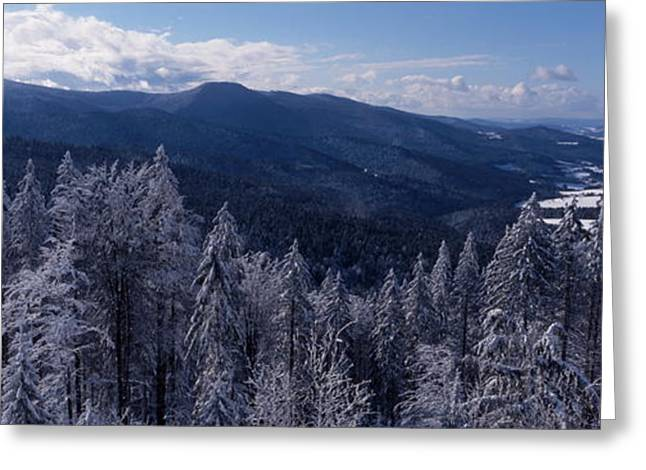 Outlook Greeting Cards - Bavarian forest landscape in winter Greeting Card by Intensivelight