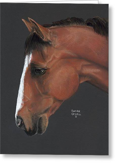 Farm Animals Pastels Greeting Cards - Bay Horse  Greeting Card by Heather Gessell
