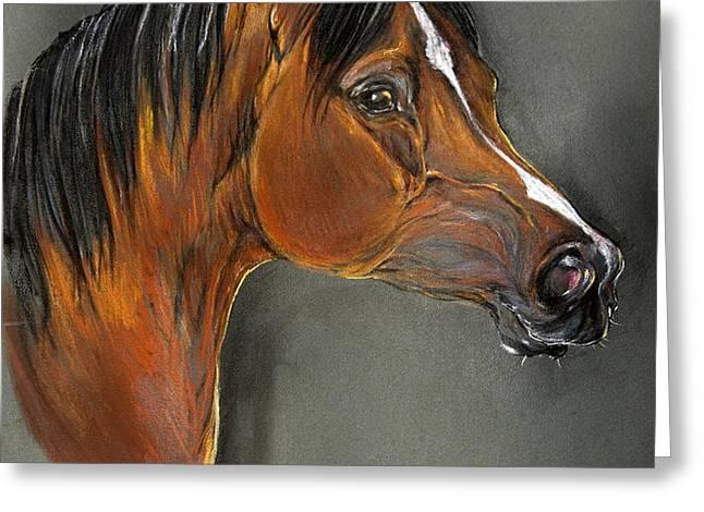 bay horse portrait Greeting Card by Angel  Tarantella