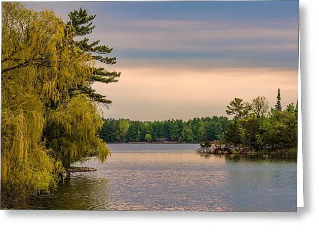 Willow Lake Greeting Cards - Bay Lake Greeting Card by Paul Freidlund