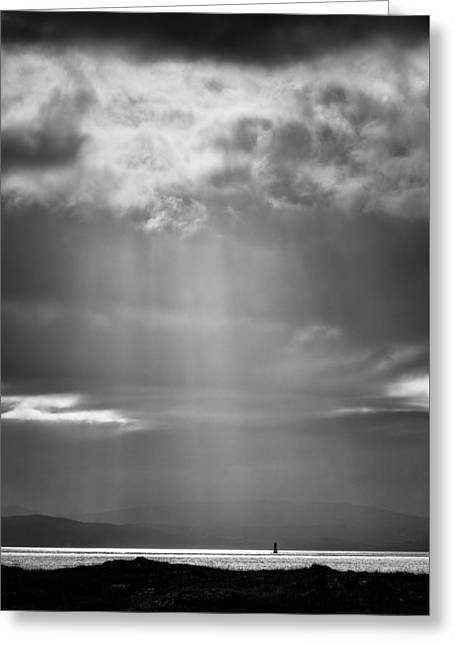 Bay Light Greeting Card by Dave Bowman