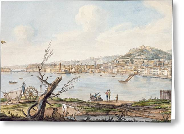 Eruption Greeting Cards - Bay Of Naples From Sea Shore Greeting Card by Pietro Fabris