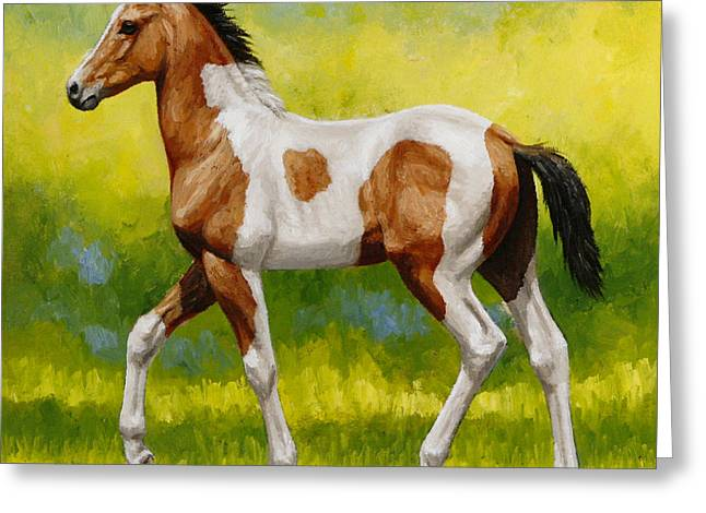 Brown Horse Greeting Cards - Bay Pinto Foal Greeting Card by Crista Forest