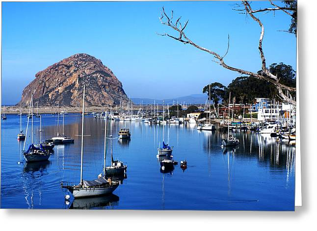 Central Coast Of California Greeting Cards - Bay View Greeting Card by Barbara Snyder