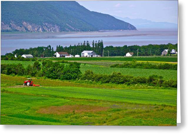 Francois Digital Art Greeting Cards - Bay View from Saint Francois Observation Platform on Ile dOrleans-QC Greeting Card by Ruth Hager