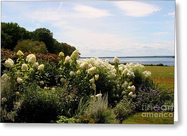 Seacapes Greeting Cards - Bay view Bristol Rhode Island Greeting Card by Tom Prendergast