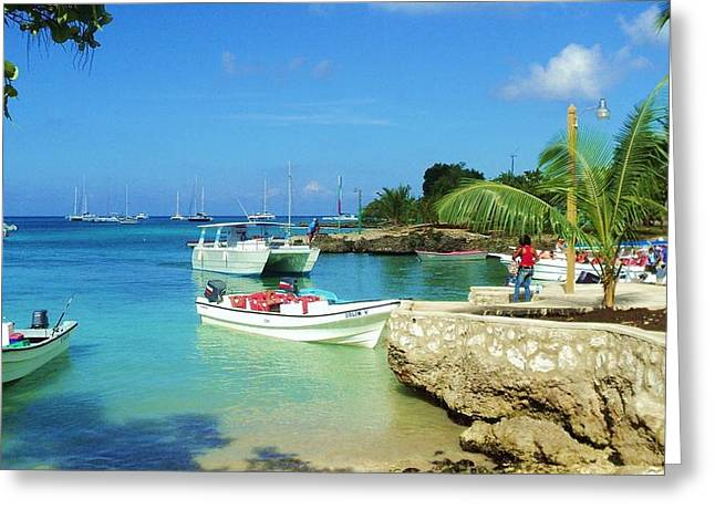 Bayahibe Greeting Cards - Bayahibe Shore Greeting Card by Iryna Burkova