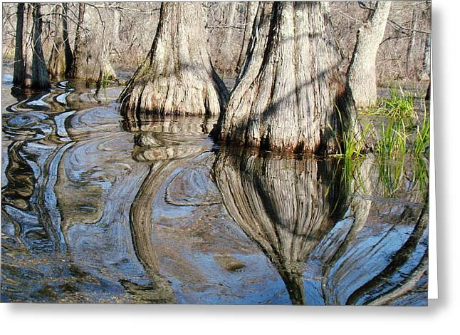 Bizzare Greeting Cards - Bayou Reflection Greeting Card by Eva Kato