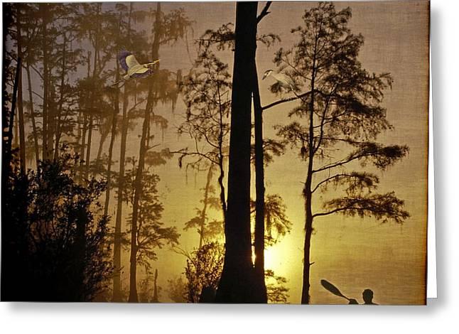 Bayou Sunrise Greeting Card by Lianne Schneider