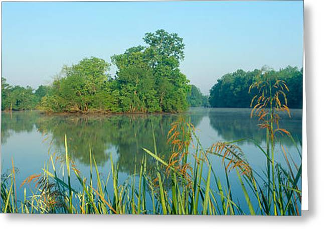 Body Of Water Greeting Cards - Bayous In Wildlife Refuge Of Lake Greeting Card by Panoramic Images