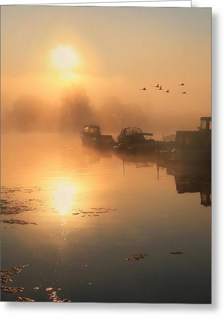 Docked Sailboat Greeting Cards - Bayside Sunrise 2 Greeting Card by Lori Deiter