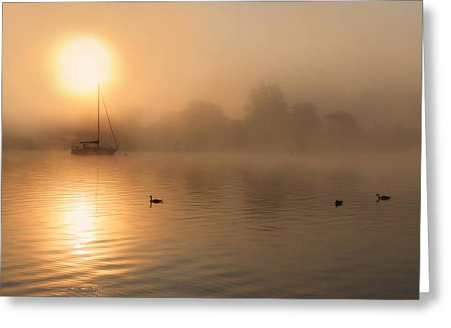 Sailboats Docked Digital Art Greeting Cards - Bayside Sunrise 3 Greeting Card by Lori Deiter