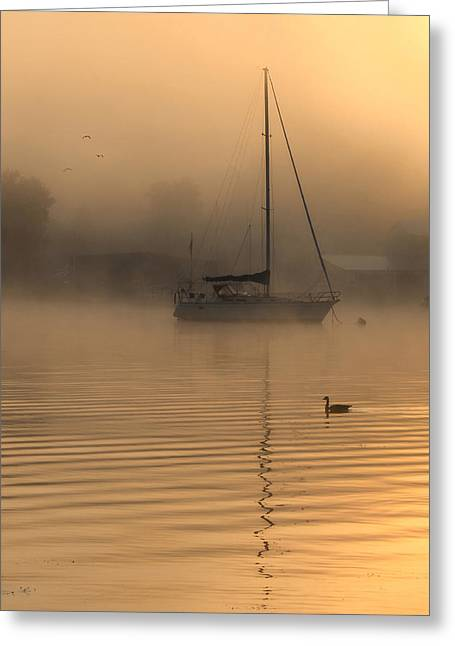 Docked Sailboat Greeting Cards - Bayside Sunrise 4 Greeting Card by Lori Deiter