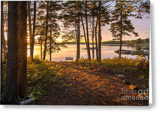 Bayview Sunset Greeting Card by Susan Cole Kelly