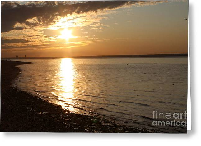 Reflections Of Sky In Water Greeting Cards - Bayville Sunset Greeting Card by John Telfer