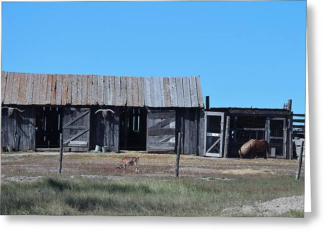 Ghostly Barn Greeting Cards - Badlands N P  34 Greeting Card by Nelson Skinner