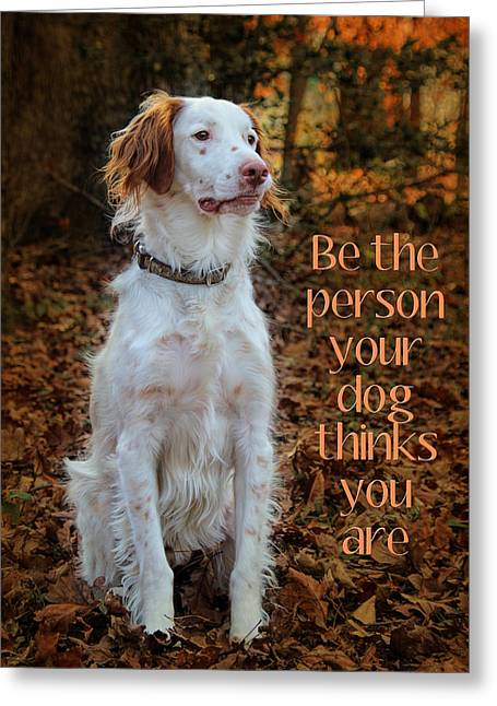 Spaniel Greeting Cards - Be Brittany  Greeting Card by Jemmy Archer