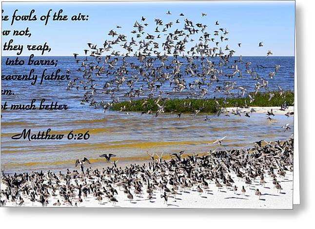 Cedar Key Greeting Cards - Be Hold the Fowls  Greeting Card by Sheri McLeroy