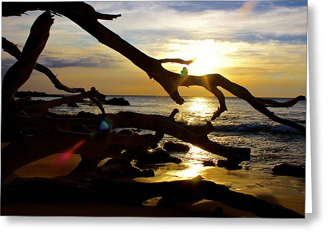 Ocean Images Greeting Cards - Beach 69 Hawaii at Sunset Greeting Card by Venetia Featherstone-Witty