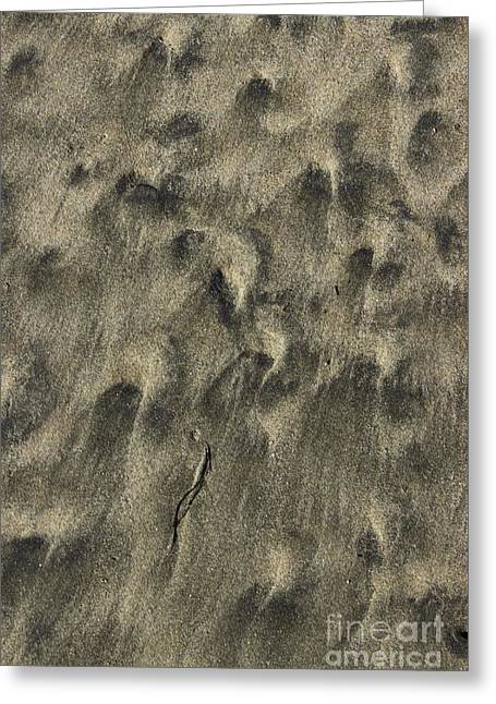 Sand Pattern Greeting Cards - Beach Abstract 06 Greeting Card by Morgan Wright