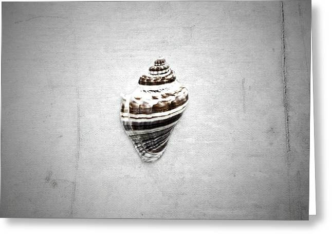 Shell Texture Greeting Cards - Beach Access Greeting Card by Mark Ross