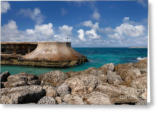 Rocky Greeting Cards - Beach and Sea Wall at Atlantis Resort Greeting Card by Amy Cicconi