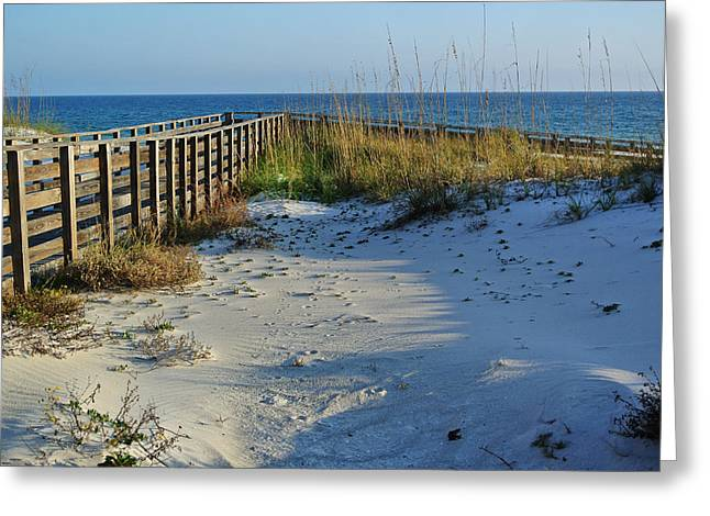 Sand Fences Digital Art Greeting Cards - Beach and the Walkway  Greeting Card by Michael Thomas