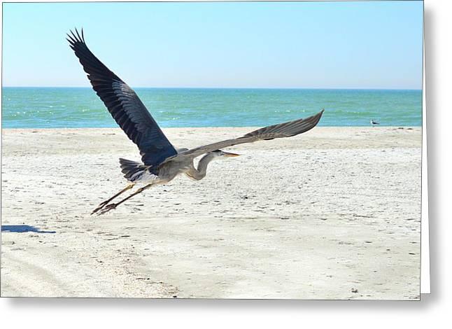 Angel Blues Greeting Cards - Beach Angel Greeting Card by Susan Molnar