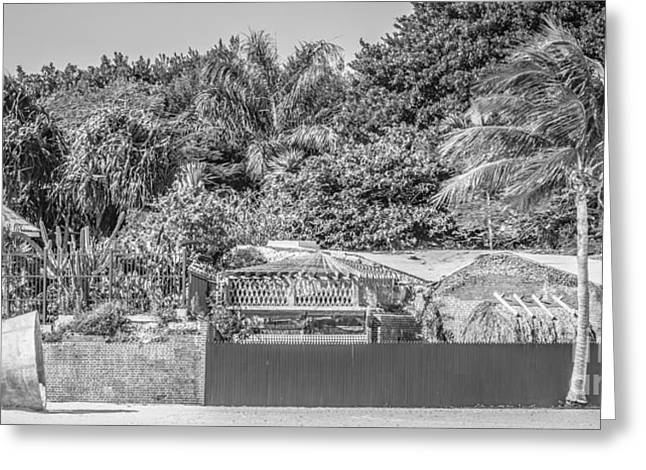 Beach Art And Key West Garden Club - Key West - Black And White Greeting Card by Ian Monk