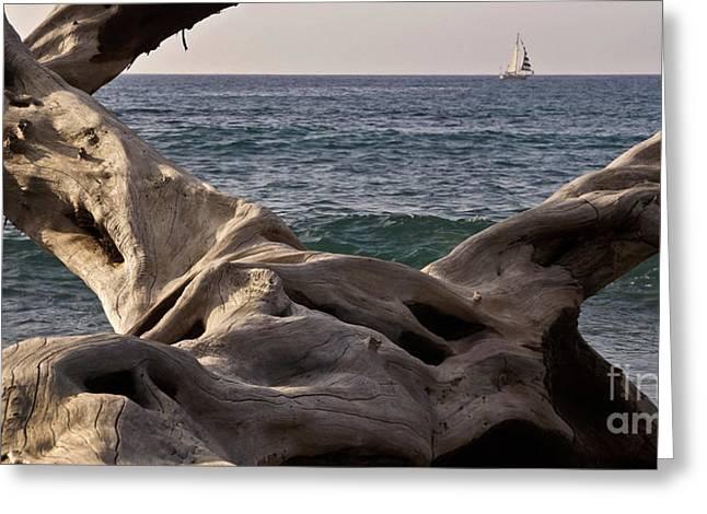 Beach Art Greeting Card by Inge Riis McDonald