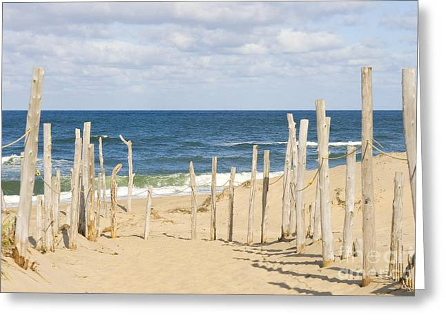 Chatham Greeting Cards - Beach at Cape cod Greeting Card by Patricia Hofmeester
