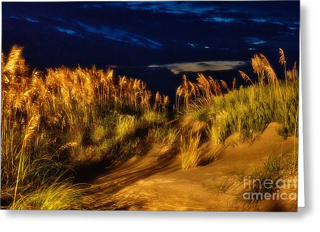 Pea Island Greeting Cards - Beach at Night - Outer Banks Pea Island Greeting Card by Dan Carmichael