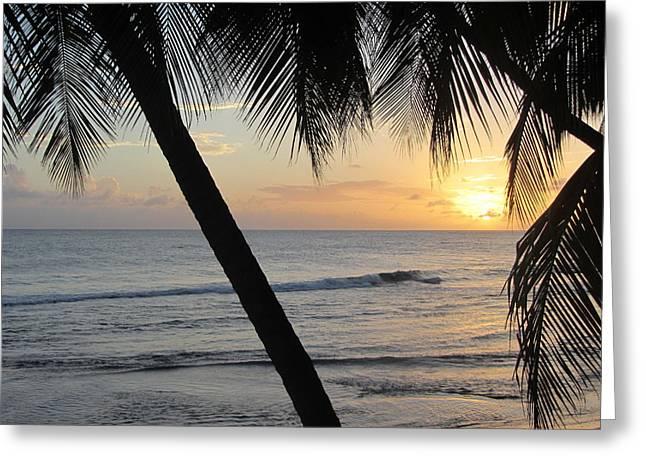 Sand Patterns Greeting Cards - Beach at Sunset 2 Greeting Card by Anita Burgermeister