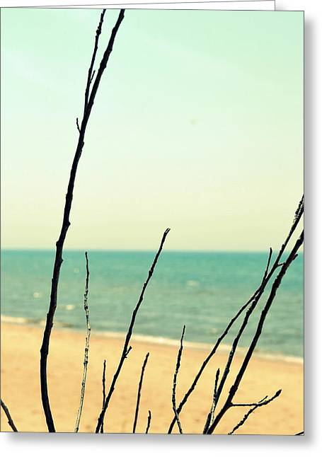 Sand Pattern Greeting Cards - Beach Branches Greeting Card by Michelle Calkins