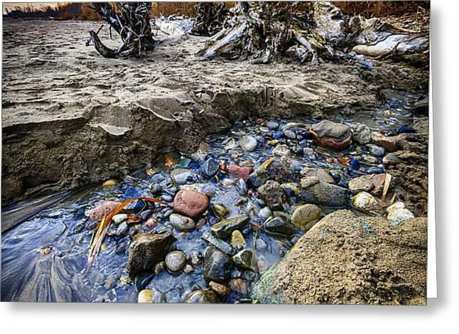 Beach brook at Scarborough Bluffs Greeting Card by Elena Elisseeva