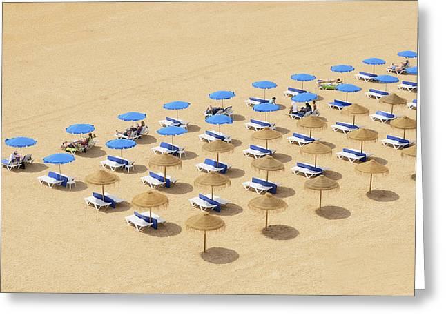 Lounger Greeting Cards - Beach Chairs And Umbrellas Set Up In Greeting Card by Michael Thornton