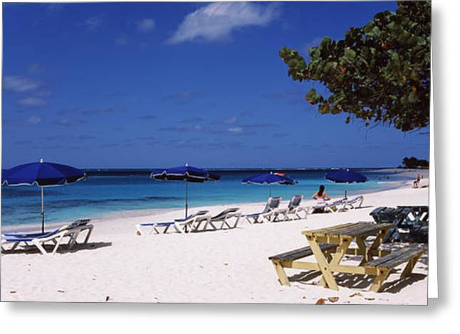 Beach Photography Greeting Cards - Beach Chairs On The Beach, Shoal Bay Greeting Card by Panoramic Images