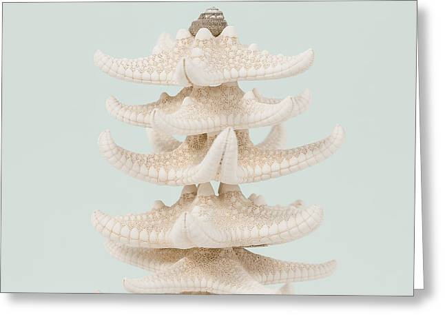 Beach Photography Greeting Cards - Beach Christmas Tree Greeting Card by Lucid Mood